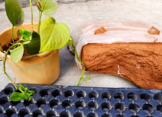 how to make cocopeat at home