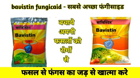bavistin fungicide powder